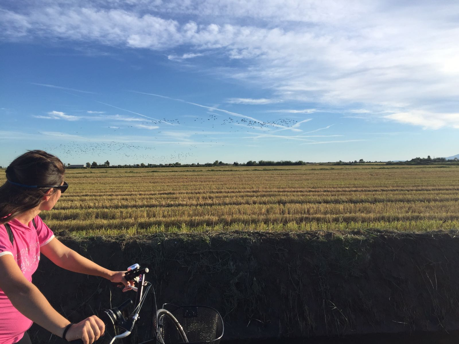 Delta bike